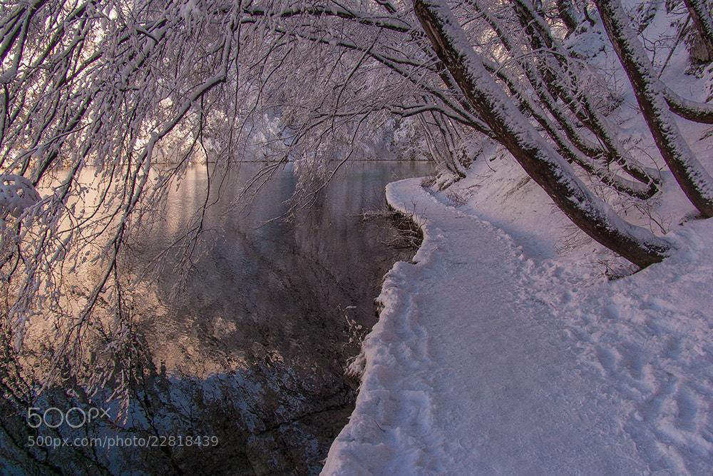 Photograph ... by Aleksandar Barišić on 500px