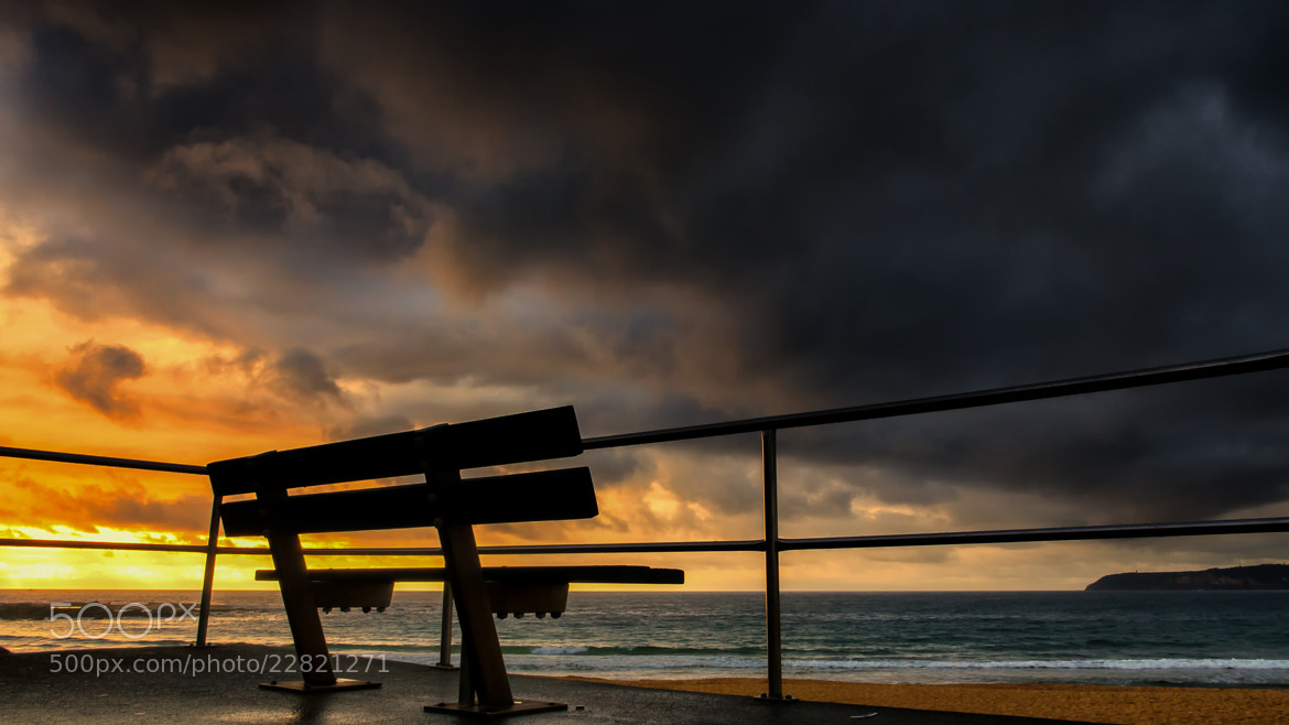 Photograph Take a Seat North Curl Curl by Paul Emmings on 500px