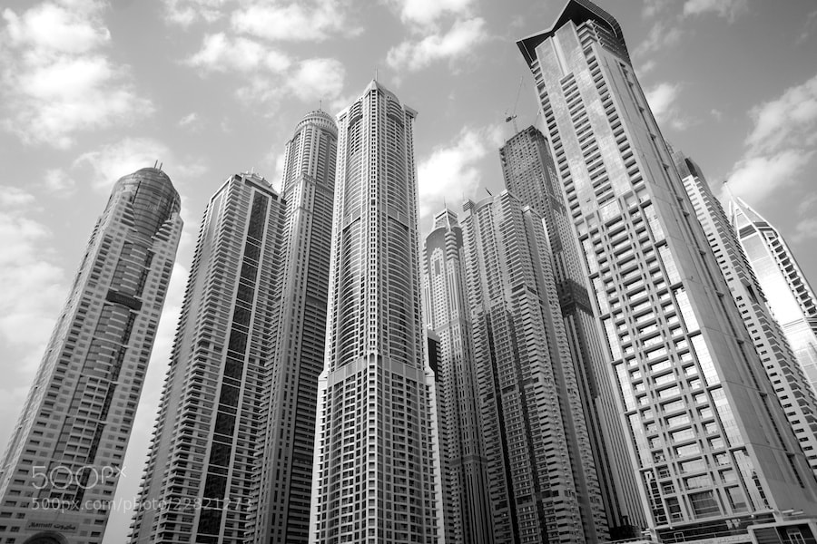 Photograph Dubai Marina - Forest of Towers by Sean Cheng on 500px