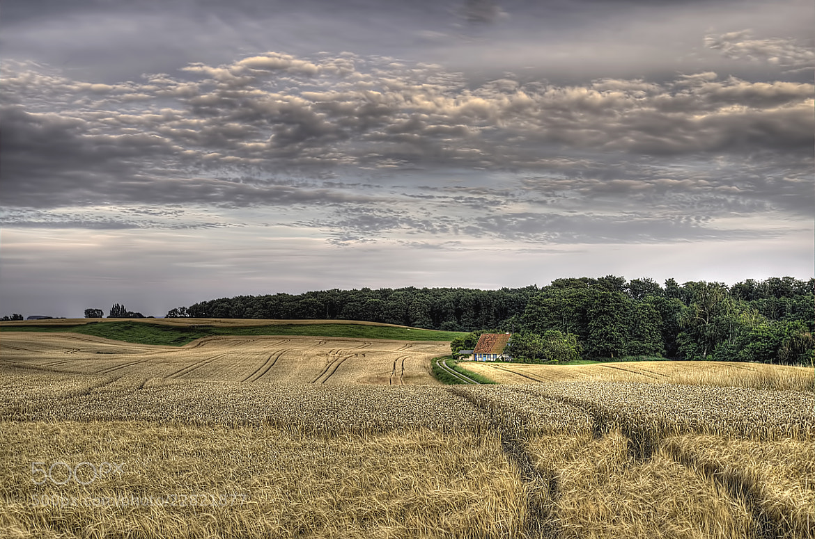 Photograph Harvest time by Kim Schou on 500px