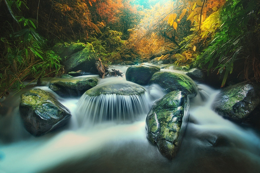 Photograph Meratus River by Hary Muhammad on 500px