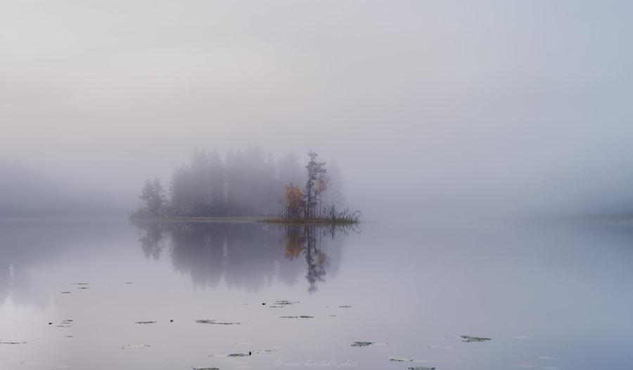 Calm Misty Evening, автор — Anssi  karilahti на 500px.com