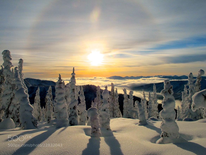 Photograph Winter Sun by Trevor Carson on 500px