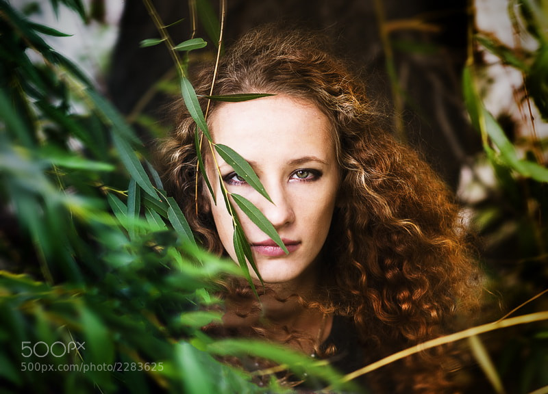Photograph Wind by Anishchenko Anastasia on 500px