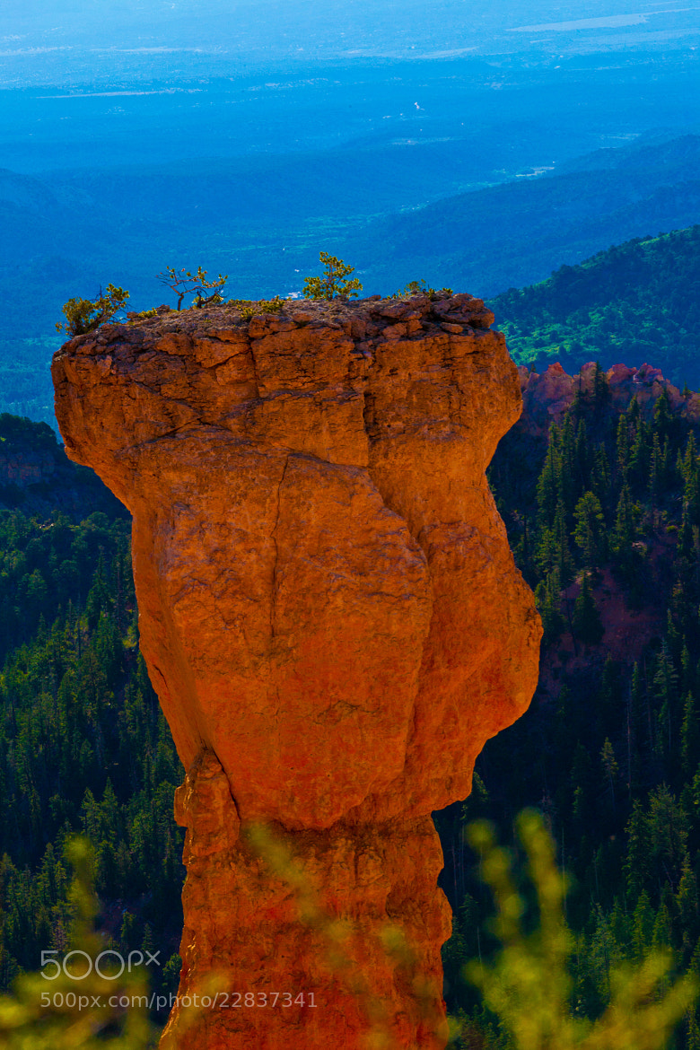 Photograph Bryce Canyon  by Cuong Van on 500px