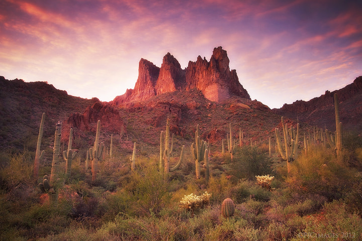 Photograph Three Sisters  by Peter Coskun Nature Photography  on 500px