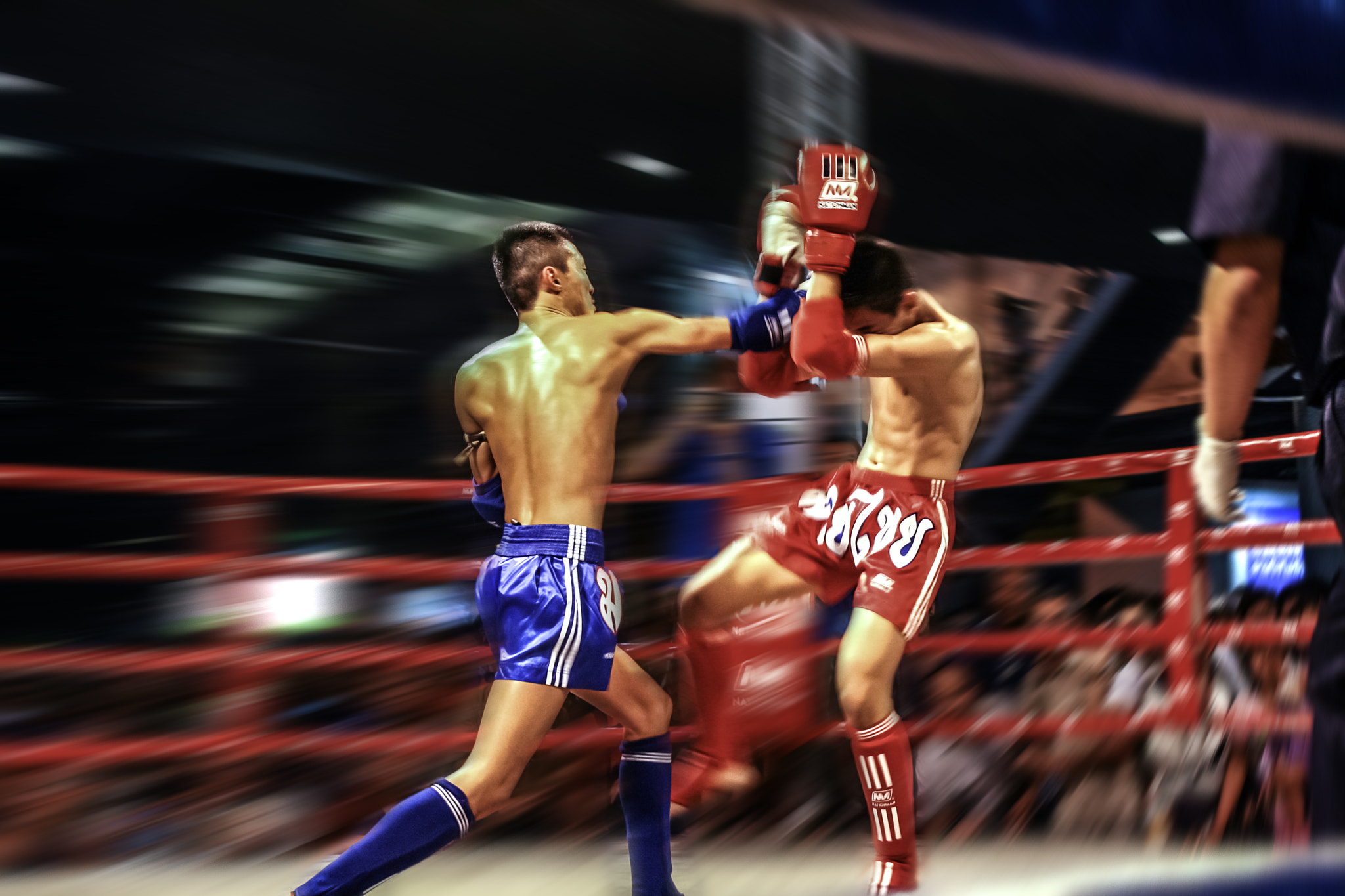 Photograph The Knockout Punch by Faisal Haroon on 500px