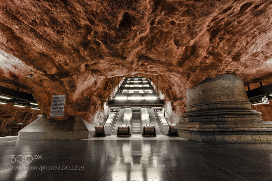 Photograph Underground world II by Alexander Dragunov on 500px