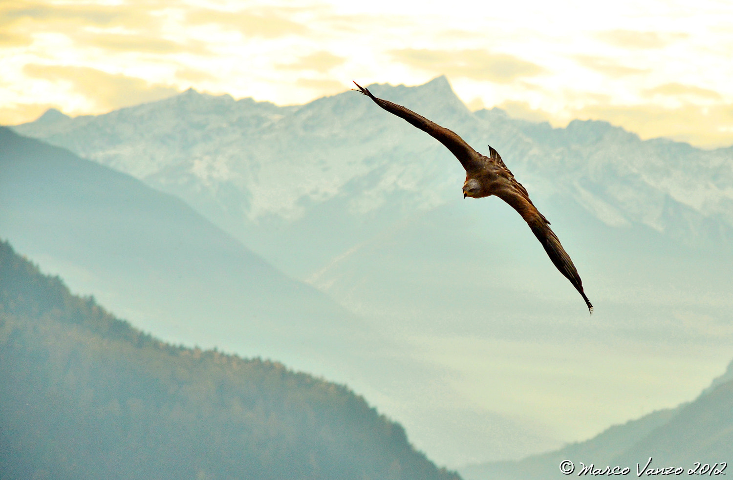 Photograph Freedom by Marco Vanzo on 500px