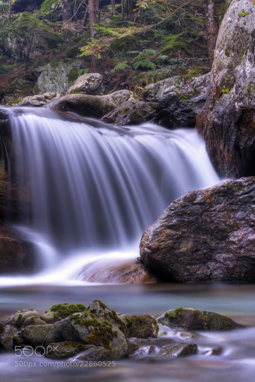 Photograph Stream in autumn by Devid Strazzante on 500px
