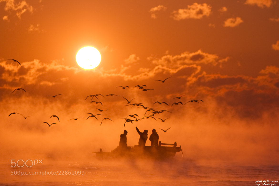 Photograph return to port by bluewind on 500px