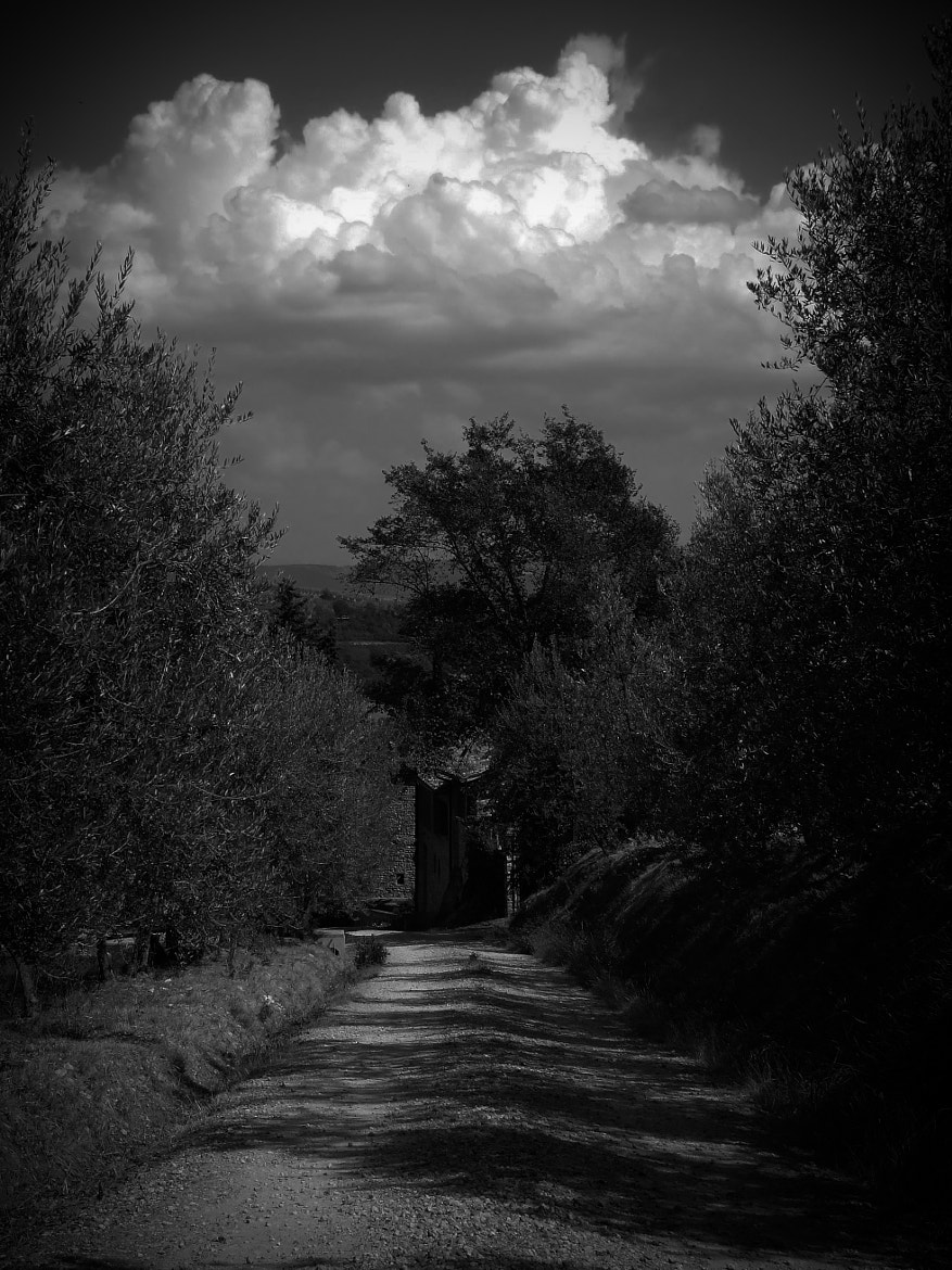 Photograph Tuscan Road by Byron King on 500px