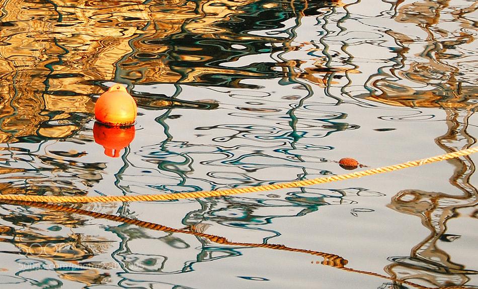 Photograph Colour flood by Petar Nakov on 500px