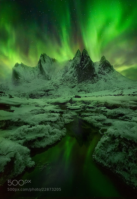 Photograph The Green Mists by Marc  Adamus on 500px