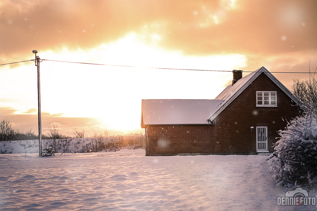Photograph January Snow in Denmark by Dennis Larsen on 500px
