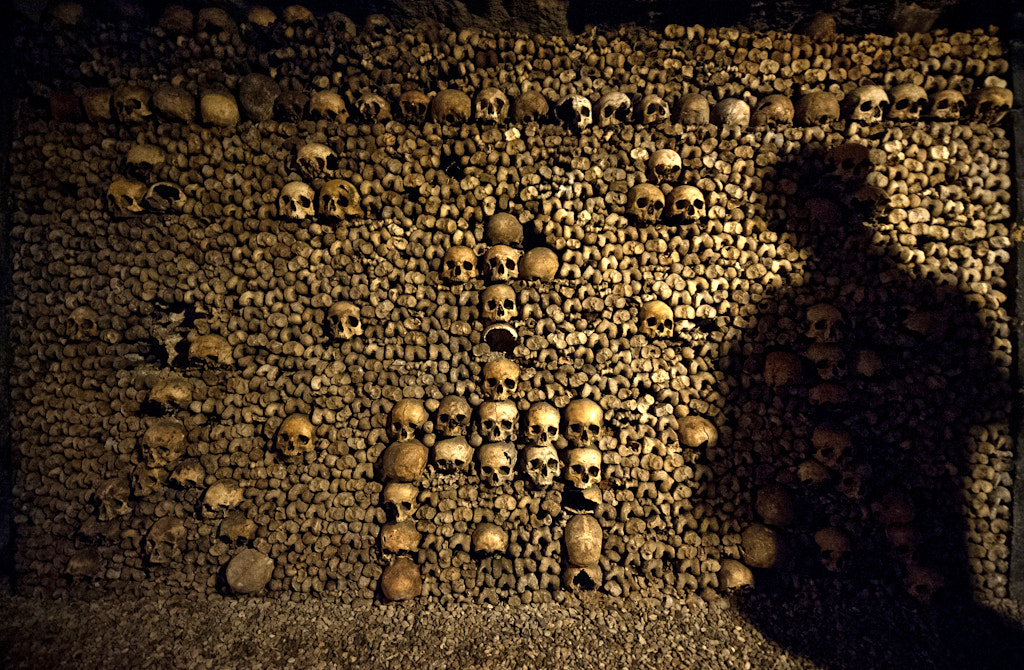 Photograph Catacombs of Paris by Navid Baraty on 500px