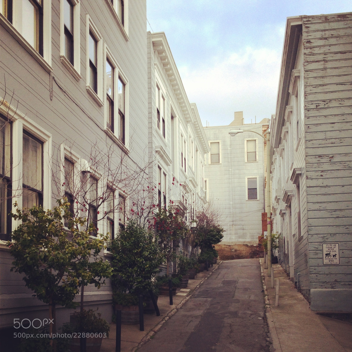 Photograph San Francisco's alley by Miha Rebernik on 500px