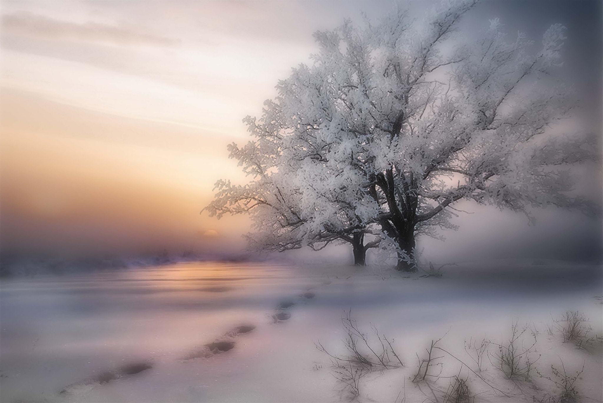 Photograph Beautiful winter by Maurizio Fecchio on 500px