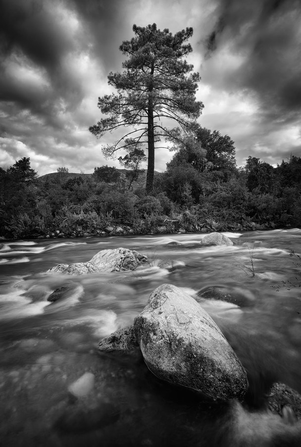 Photograph River Fango by Michael  Breitung on 500px