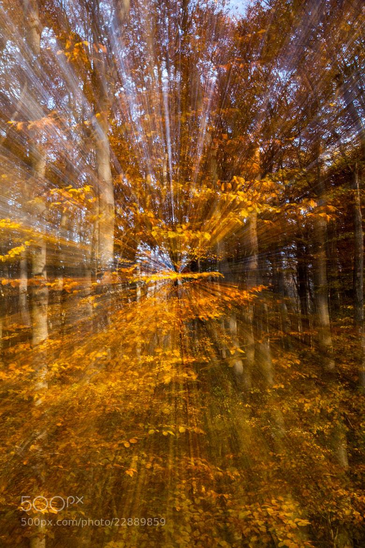 Photograph Speed of light by Balázs Nagy on 500px