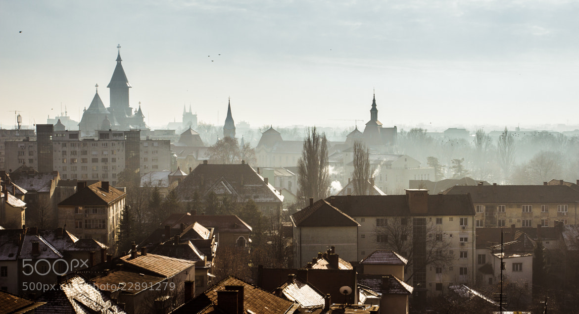 Photograph Winter in the city - Timisoara by Bogdan Marian on 500px