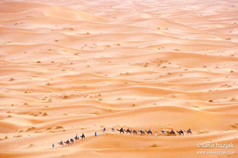 Photograph Desert caravan by Saša Huzjak on 500px