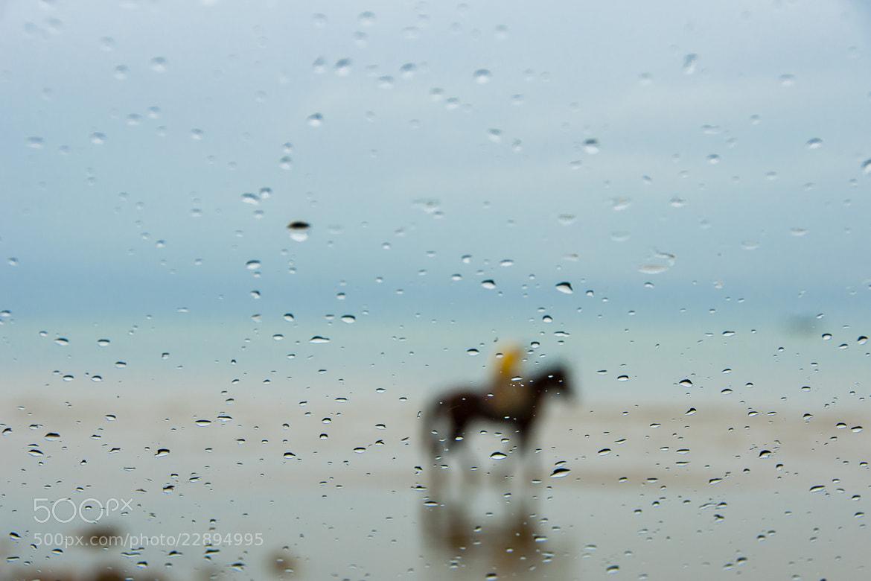 Photograph Behind by Hosein Esmaeelbegi on 500px