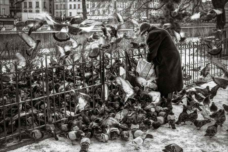 Photograph Nanny by Frédéric Baque on 500px