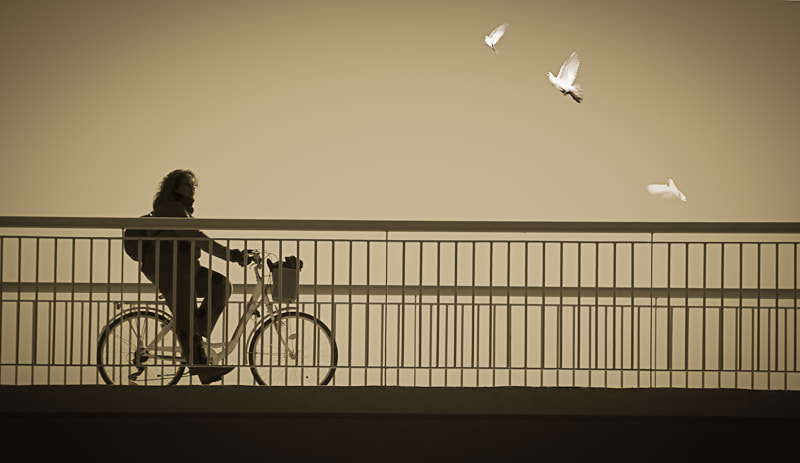 Doves and Cyclist