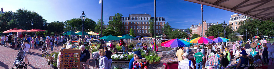 The Saturday  morning Farmer's Market in Alexandria is claimed to be the oldest, continually operating farmers market in the US.  Image # 5943