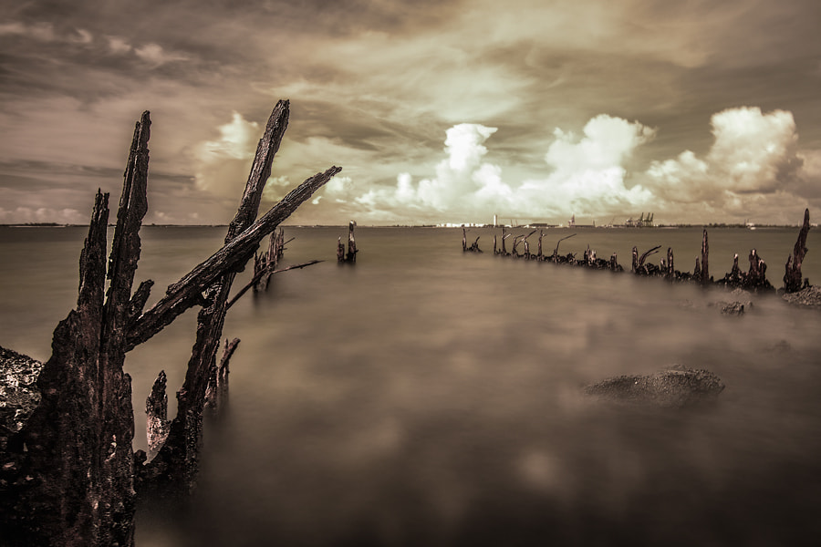 Photograph Lost Dock by Tim Grey on 500px