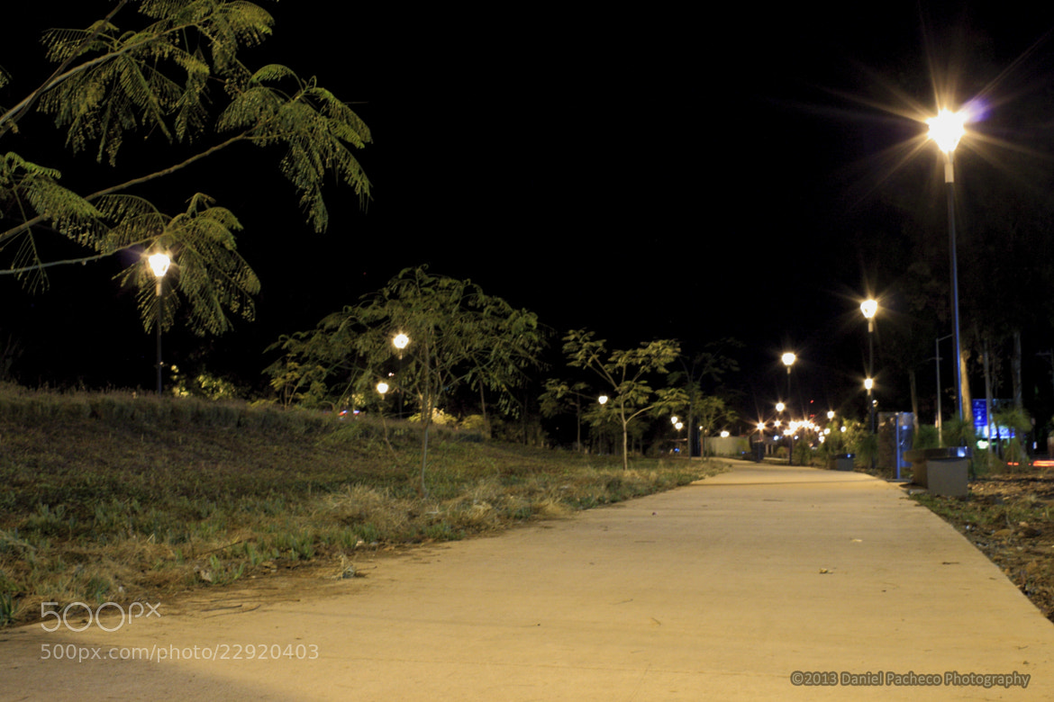 Photograph Nightwalk by Daniel Pacheco on 500px