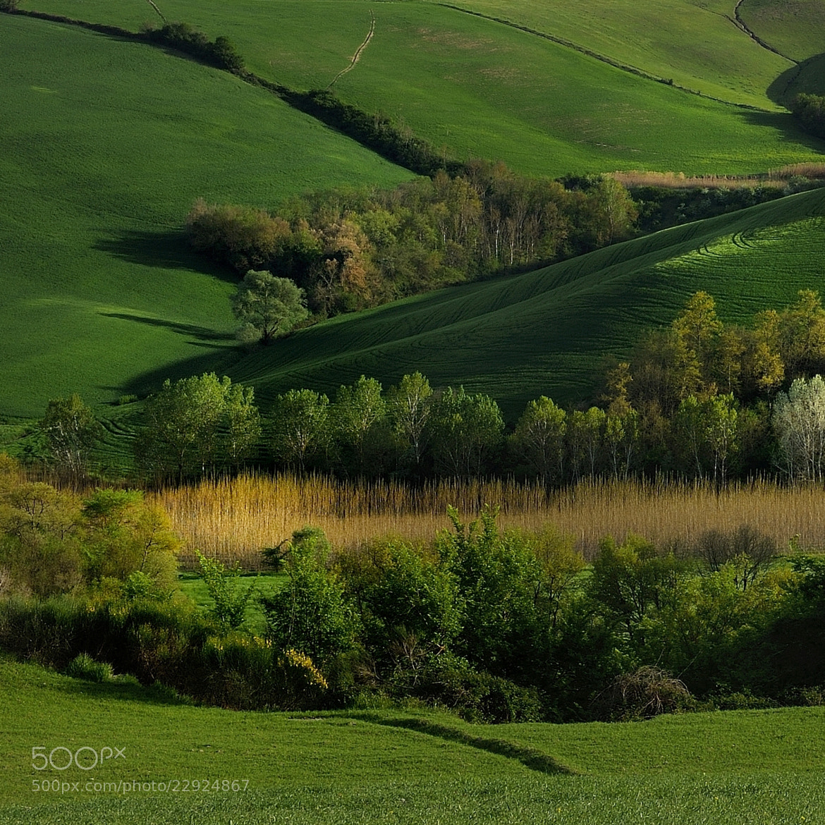 Photograph light by mauro maione on 500px