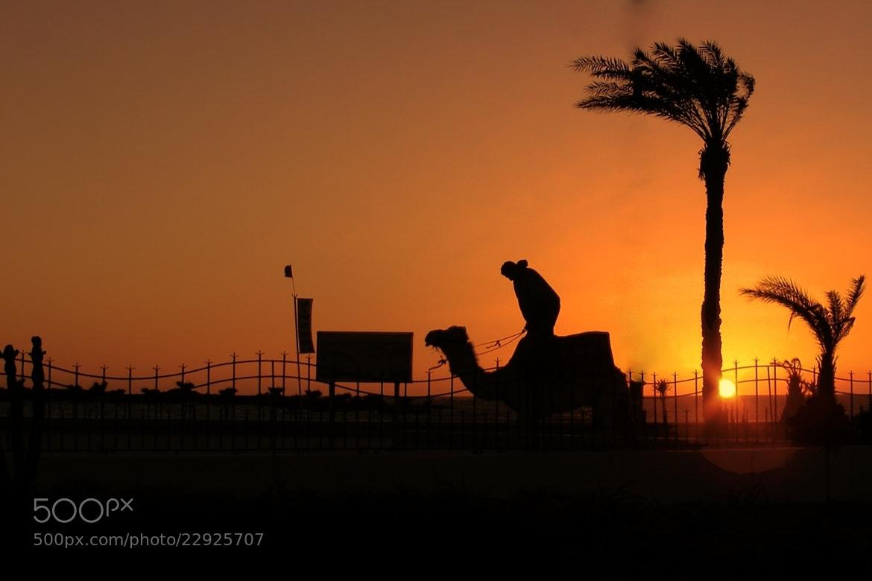 Photograph Sunquility by Jacek Gadomski on 500px