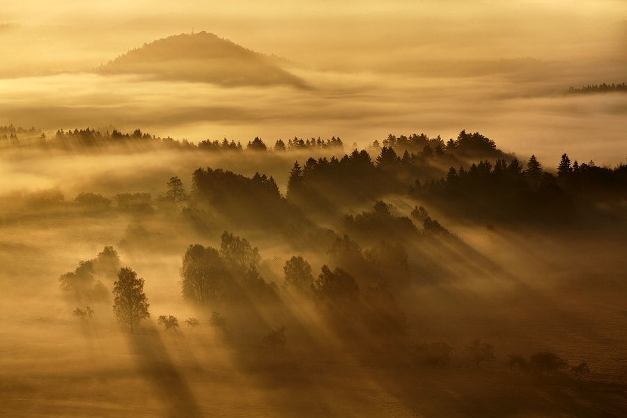 Photograph Morning rays 1 by Daniel Řeřicha on 500px
