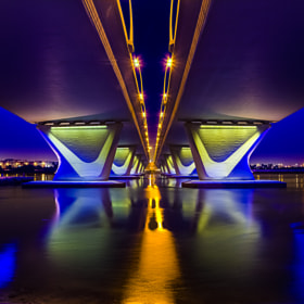 D' Color's Of D' Night Under D' Bridge IV by anthony mejia on 500px.com
