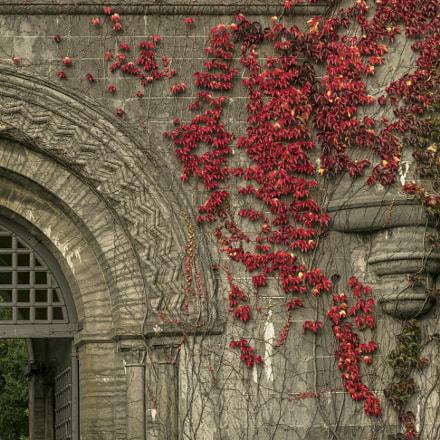 Penrhyn Castle Gate