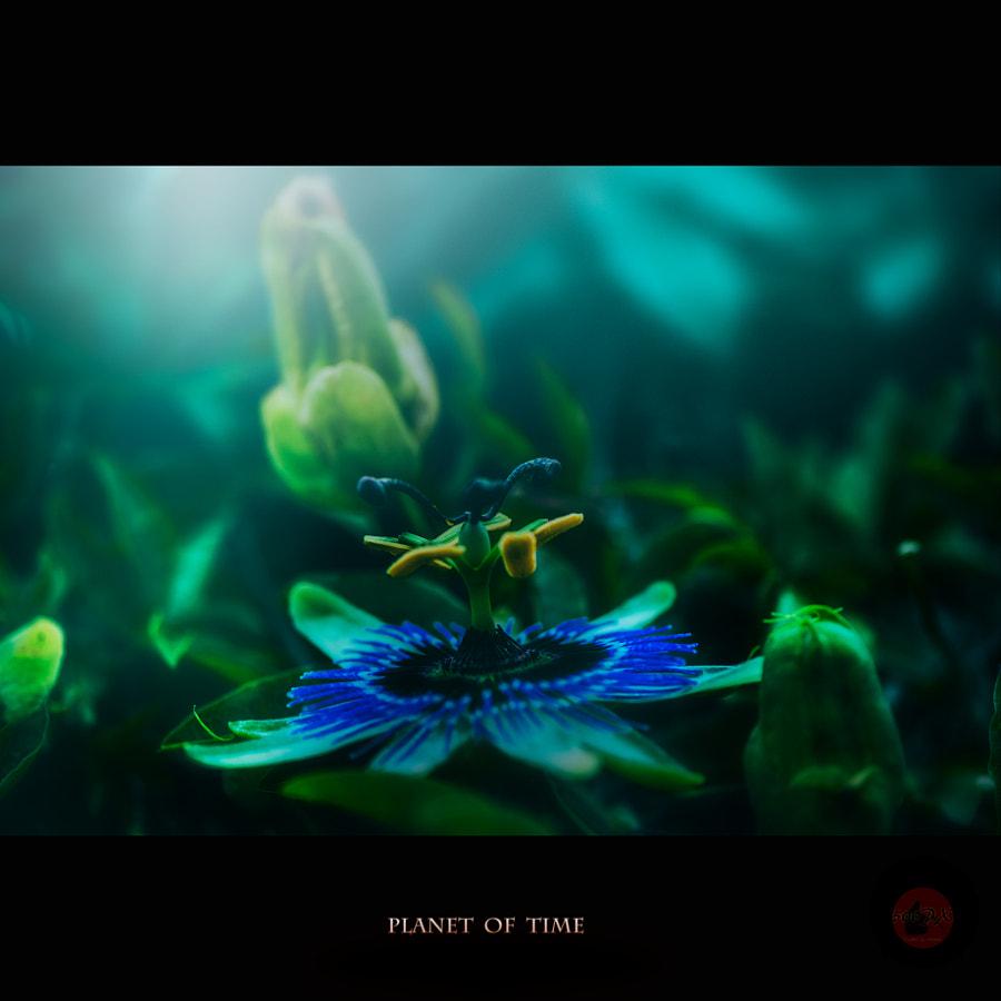 時の惑星 de Kiyoshi Iida sur500px.com