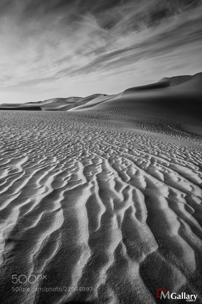 Photograph Land of Sand by Dr.Mohammed Alkandari on 500px