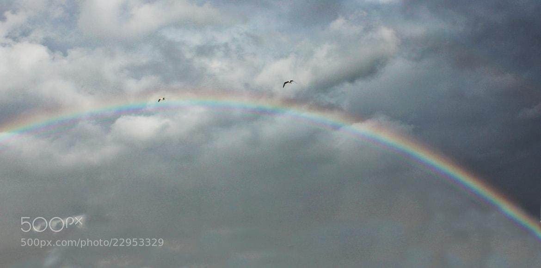 Photograph Cloudy Day by Seren Özgür on 500px