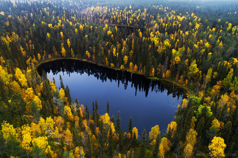 Small lakes in the middle of boreal forest by Karl Adami on 500px.com