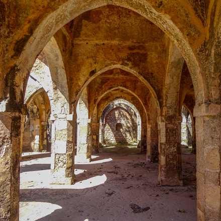 Inside the coral ruins of the Great Mosque of Kilwa. Kilwa Kisiwani, Tanzania, 2015 ??
