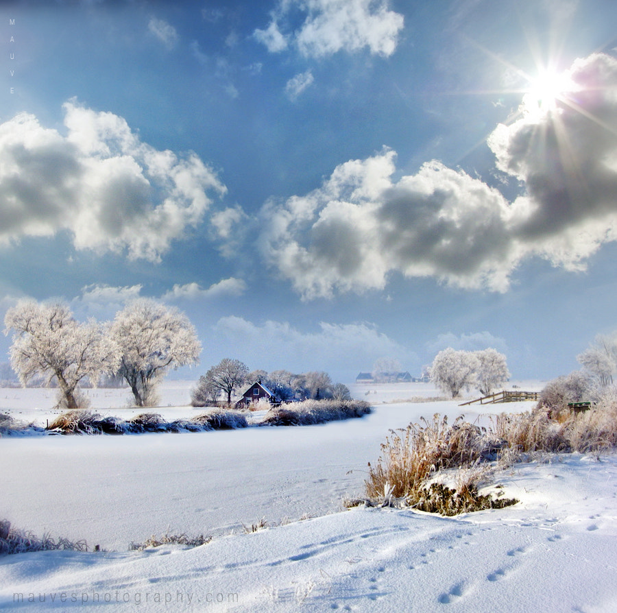 Photograph Bucolic scene by Mauve . on 500px