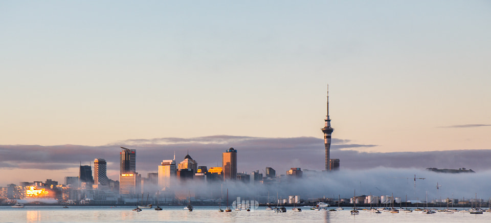 Photograph Foggy Sunrise in Auckland by David Hera on 500px