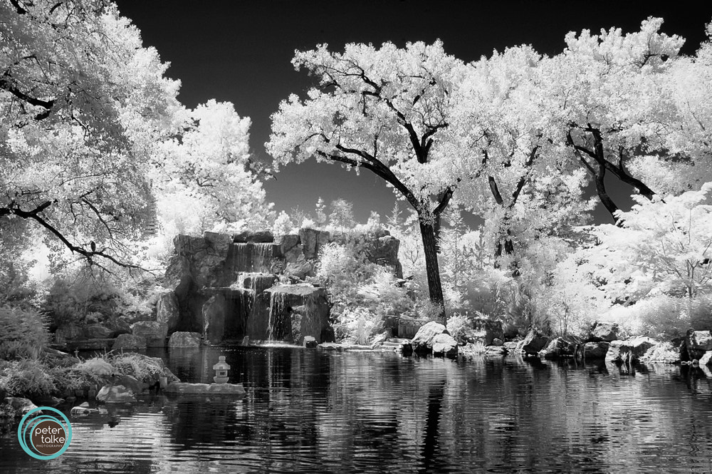 Photograph Albuquerque in IR by Peter Talke Photography on 500px