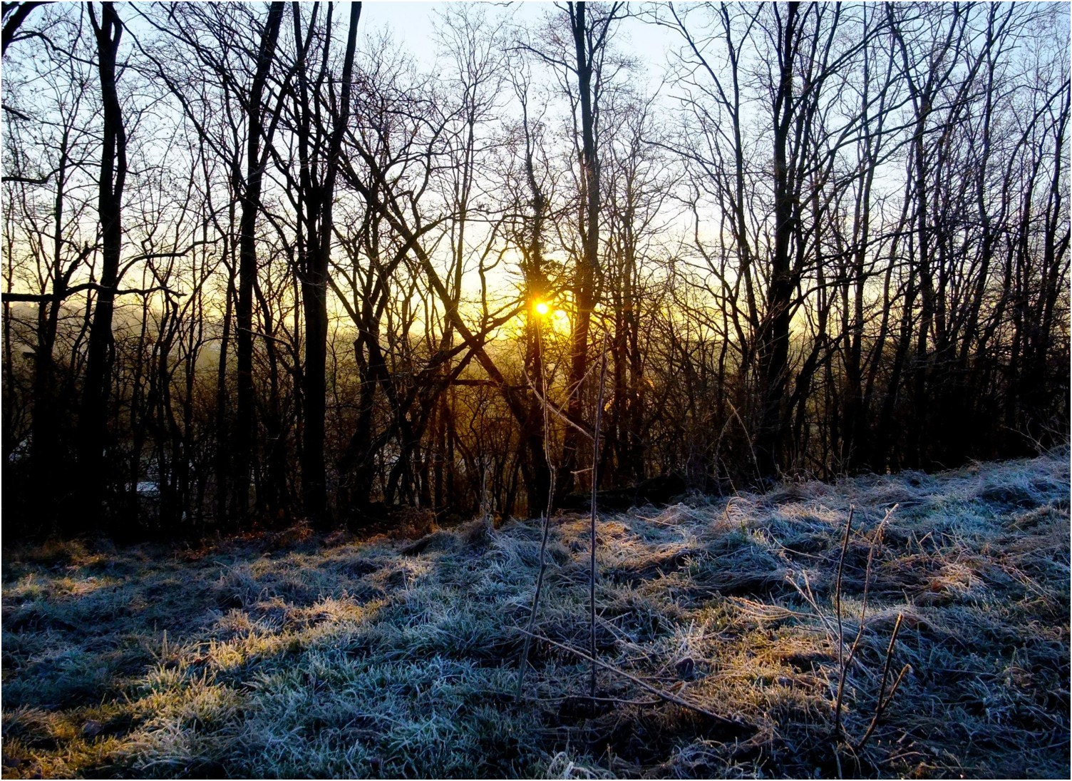 Photograph cold morning by Ulrich Fleischer on 500px