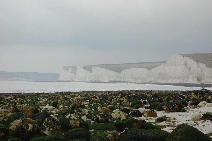 Seven Sisters, Sussex, UK by Sandra on 500px.com