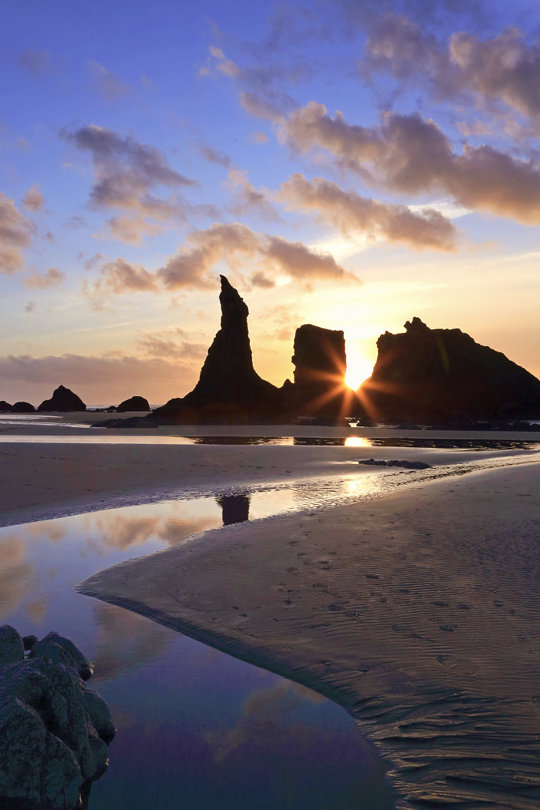 Photograph Sunset's Crowning Achievement by Renae Smith on 500px