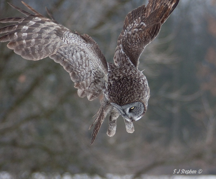 Photograph Focussing in on Target by Stephen Stephen on 500px