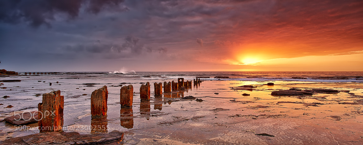 Photograph Pathway to the sun by Stanley Kozak on 500px